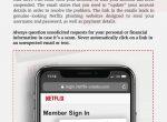 Netflix scam