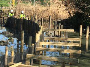 Woodford Park lake boardwalk
