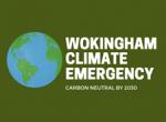 wokingham borough council climate emergency
